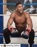 RINGSIDE Profi boxerské rukavice Gamma Limited Edition (16oz) - červená/černá
